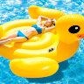 Надувной утка для плавания
